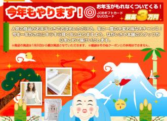 ながいきや本舗2013福袋キャンペーン