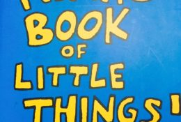 NINA'S BOOK OF LITTLE THINGS!