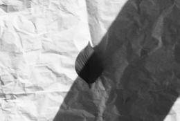 葉っぱの白黒写真