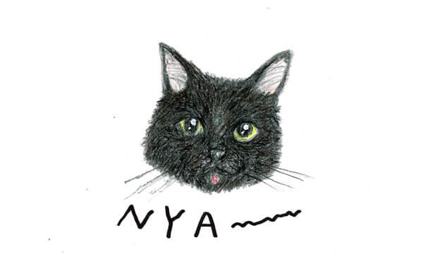 猫のイラストレーション