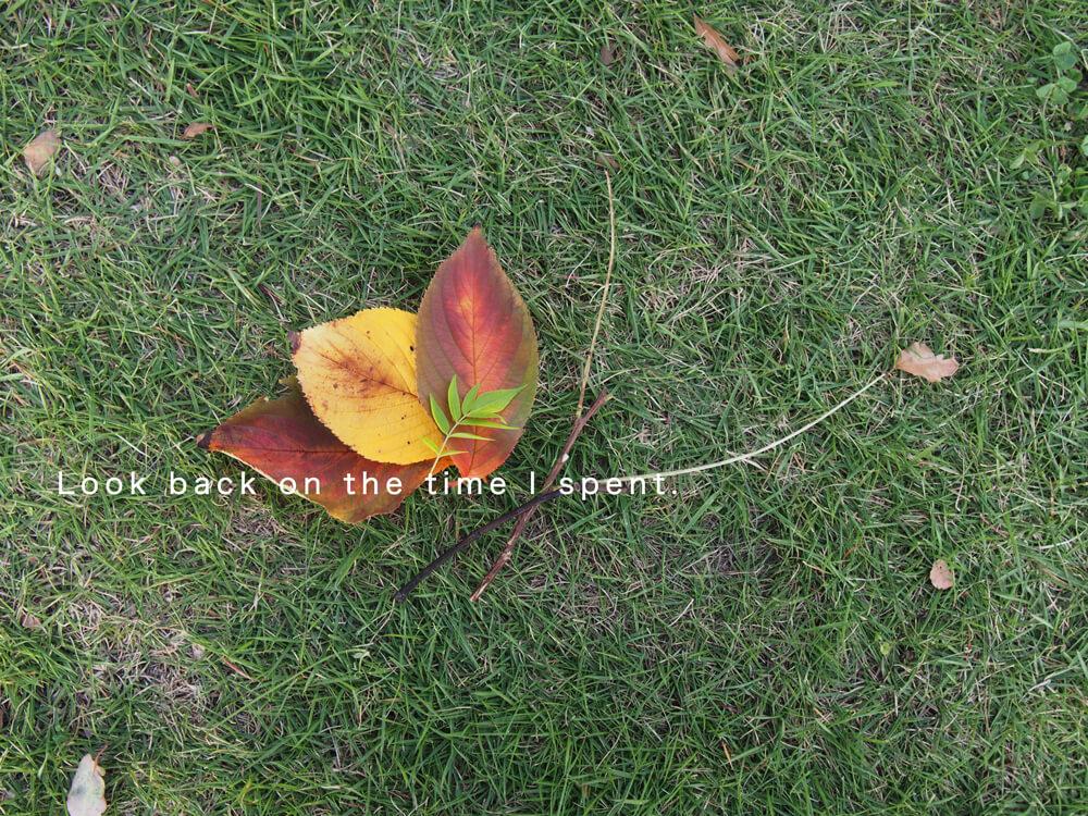 葉っぱ飾り 写真