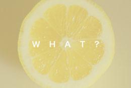 レモンの写真