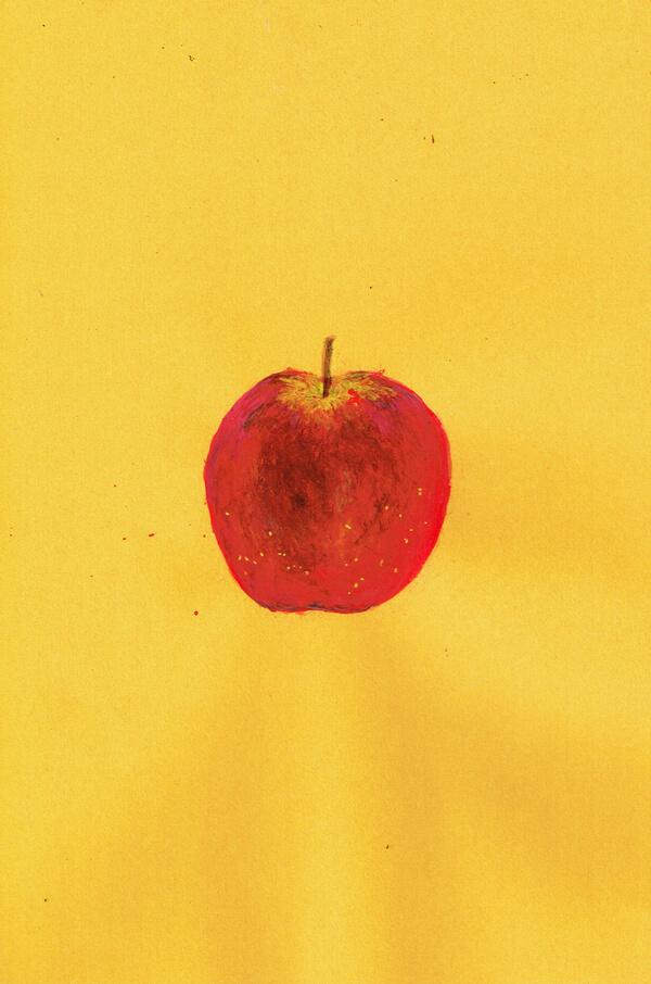 りんご  イラスト