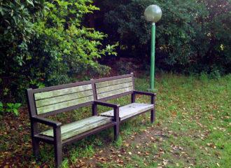 公園のベンチ 写真