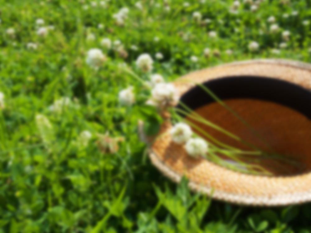 麦わら帽子のぼけた写真