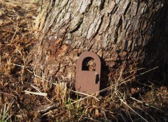 木に扉 写真