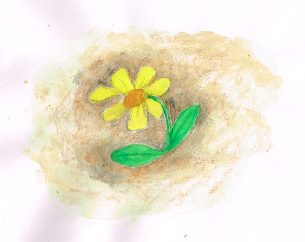 踏まれた花のイラスト